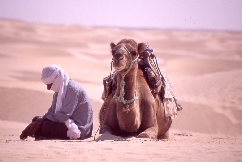 Tunisie Egypte, un circuit atypique mais incontournable !3