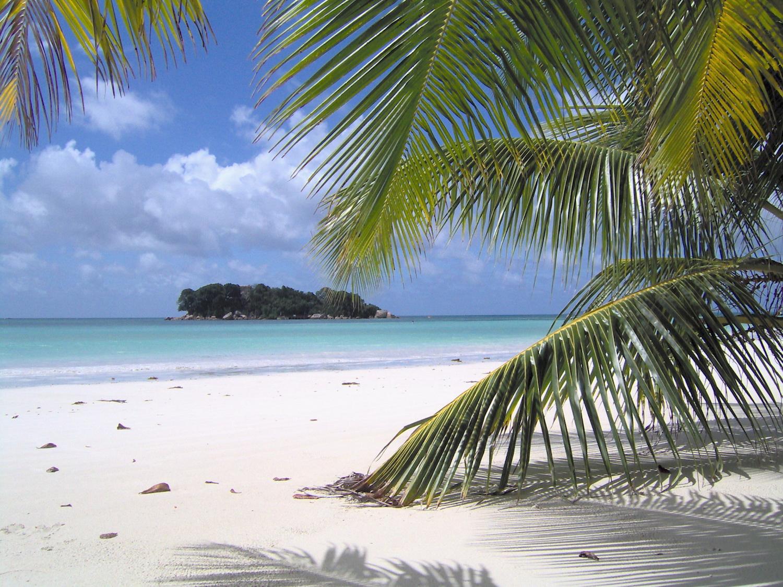 Un voyage aux Seychelles, quoi de mieux pour des amoureux ?1