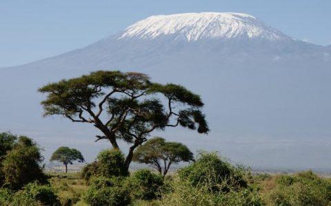 Vacances en Afrique : À la découverte des merveilles du Kenya !