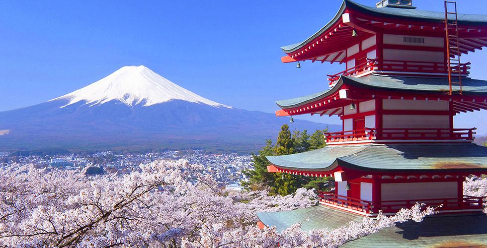 Un site à consulter pour préparer son voyage au Japon
