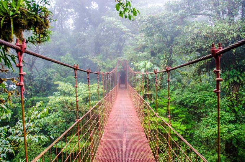Pura Vida : Un voyage inoubliable au Costa Rica !