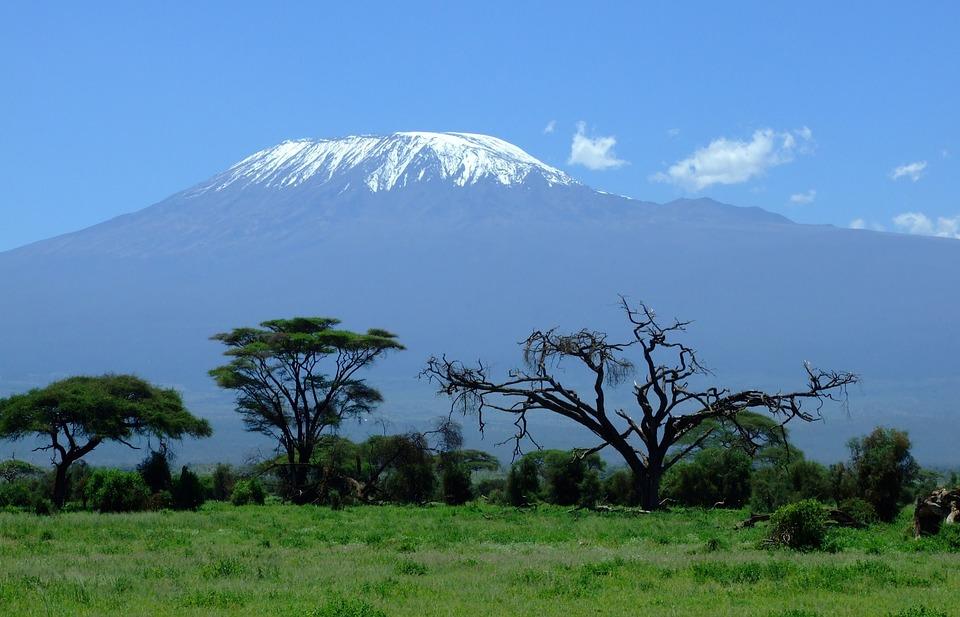 Visiter des parcs naturels, une des bonnes raisons pour se rendre au Kenya