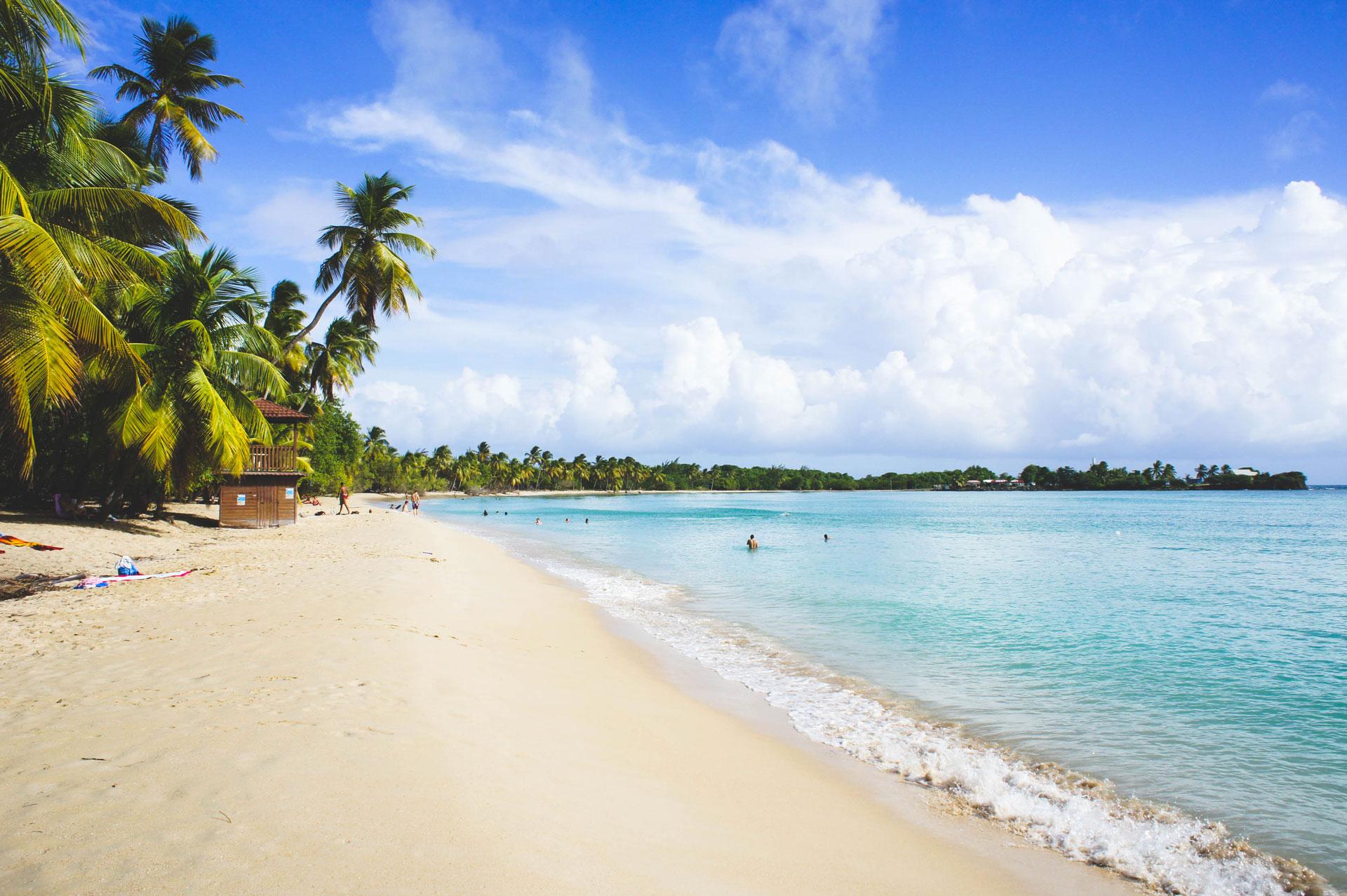 Parcourir la Martinique en voiture