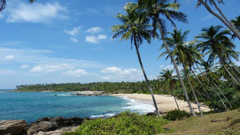 Les meilleures plages au Sri Lanka