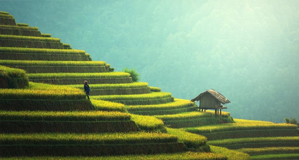 Les principales activités à réaliser pendant un voyage sportif en Thaïlande